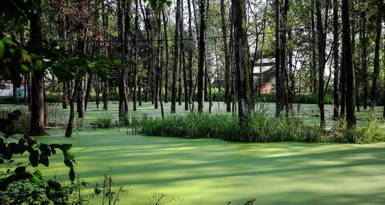 دریاچه سراوان