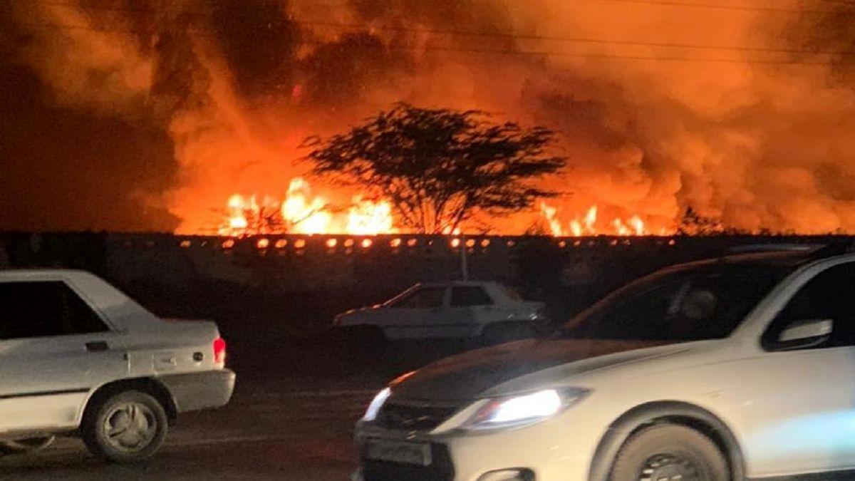 آتشسوزی در نیزارهای ورودی بوشهر